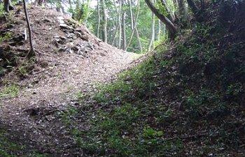 Ogura Castle