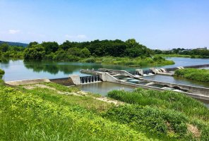 upstream-tamagawa.jpg