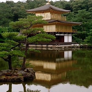 Golden Pavilion of Kinkaku-ji
