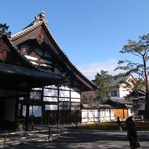 Kinkaku-ji (t) in winter