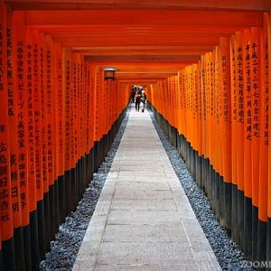 Red Gates of the Fushimi Inari Shrine in Kyoto